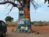 Reclameboom in Lamin Lodge Gambia