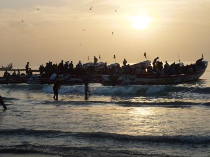 Tanji een vissersdorpje in Gambia waar laat op de middag de bootjes terugkomen met hun vangst.