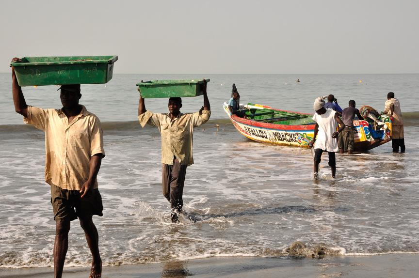 Vissers die de vangst uit de bootjes halen en naar land brengen