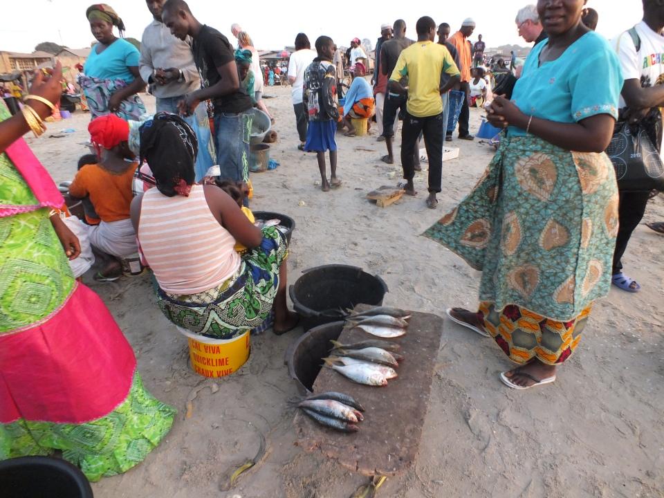 Op het strand van Tanji in Gambia wordt de vis verhandeld